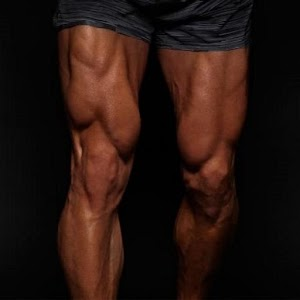 Download All Quadriceps exercises For PC Windows and Mac