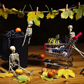 Waiting for Halloween by Nicu Buculei - Artistic Objects Still Life ( haloween, autumn, still life, toys, skeleton,  )