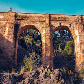 Aquaduct by Roberto Sorin - Buildings & Architecture Bridges & Suspended Structures ( old, europe, stone, architecture, travel, landscape, pont, heritage, spain, montes, southern, ancient, aqueduct, arroyo, construction, water, building, tourism, forest, don ventura, destination, costa del sol, history, malaga, bridge, historical, world, river )