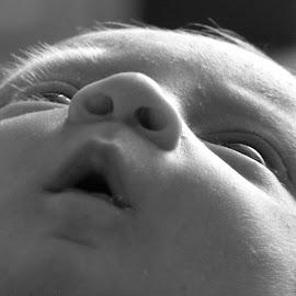 baby by Nick Parker - Babies & Children Child Portraits (  )
