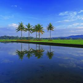 by Benny Sugiarto Eko Wardojo - Landscapes Travel