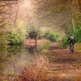 Basingstoke Canal by Colin Evans - Landscapes Travel ( cyclist, cycle, bike, autumn, fall, basingstoke, canal, golden, river )