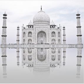 Taj by Rs Photography - Buildings & Architecture Public & Historical ( love, mahal, reflection, taj, taj mahal )
