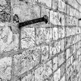 Nailed by Jason Lemley - Buildings & Architecture Public & Historical ( fort pulaski, nail, texture, infrared, black & white, railroad spike, bricks, fort )