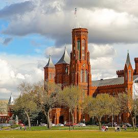 The Castle by Richard Michael Lingo - Buildings & Architecture Public & Historical ( historic, smithsonian, buildings, washington, architecture )
