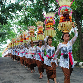 Procession by Yande Ardana - People Street & Candids ( bali, temple procession, indonesia, offering )