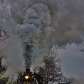 Take a Ride  by Anna Tripodi - Transportation Trains ( cool, lancaster pa, old, train, fun, straugsbury,  )