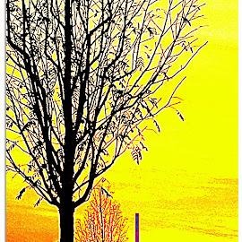Sonnenuntergang2 by Marianne Fischer - Instagram & Mobile iPhone