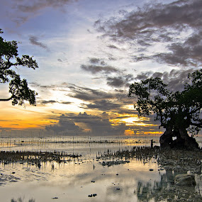 Two Old Friends by Geb Bunado - Landscapes Sunsets & Sunrises ( kalag-kalag, seascape, beach, binoongan, siquijor, landscape, mangrove )