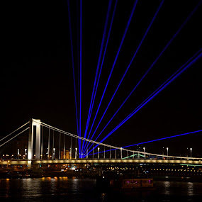 Light by Zsuzsi Zsidai - Public Holidays Other ( hungary, budapest, bridge, celebration, danube )