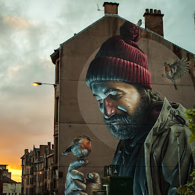 man and birds by Andrei Ciuta - City,  Street & Park  Neighborhoods ( scotland, urban, color, sunset, graffiti, street, glasgow, birds, man, city )