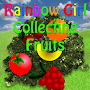 RainbowGirl Catch Fruit Expert