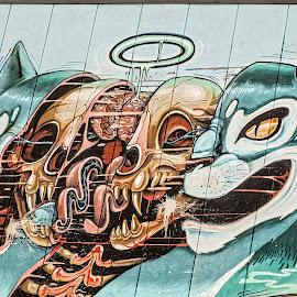 Creative Look Inside by Richard Michael Lingo - Artistic Objects Other Objects ( artistic objects, cat, norway, graffiti, bergen )