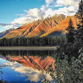 Pond Reflections by Patricia Phillips - Landscapes Travel ( ponds alaska reflections )