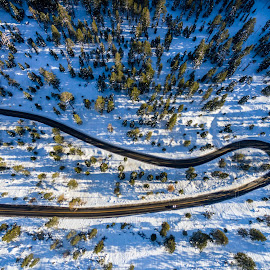 Up in the air  by Art Khosravi - Landscapes Forests ( winter, drone, nature, california, tahoe, snow, above, road, landscape, curves, lake tahoe )