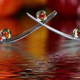 by Dipali S - Artistic Objects Other Objects ( abstract, fork, reflection, artistic, spoon, spheres, refraction )