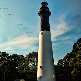 Hunting Island Lighthouse by Sandra Maldonado - Landscapes Beaches