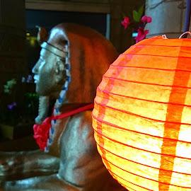 Oriental light by Jo-Ann Tan - Novices Only Objects & Still Life