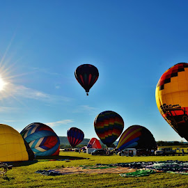 UP UP AND AWAY by Rhonda Rossi - Transportation Other