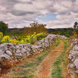 by Renato  Bareta - Landscapes Cloud Formations ( clouds, nature, landscape, stones, flowers )