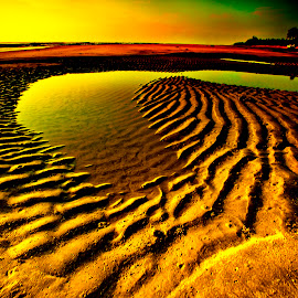 by Hockseng Ong - Nature Up Close Sand