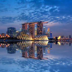 Reflection by Nicholas Leong - City,  Street & Park  Vistas