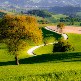 The sinuous road by Mauro Fini - Landscapes Mountains & Hills ( san severino marche, marche )