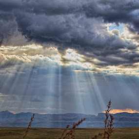 Rays of Light by Steven McGregor - Landscapes Prairies, Meadows & Fields ( south africa )