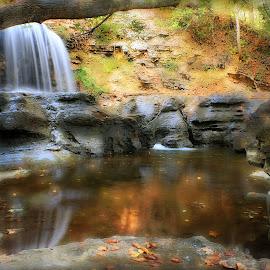 A PLACE FOR REFLECTION by Dana Johnson - Landscapes Waterscapes ( reflection, waterscape, cascade, waterfall, landscape, pond )