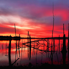 almost dawn by Roger Becker - Landscapes Waterscapes ( water, waterscape, landscape )