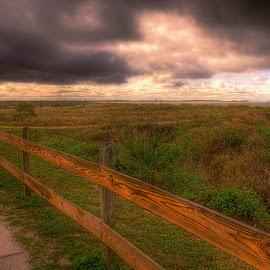 by Edward Allen - Landscapes Prairies, Meadows & Fields