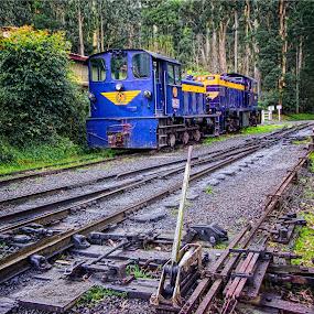 by Stephen Hooton - Transportation Trains ( australia, trains )
