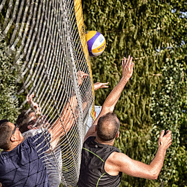 Hard Struggle At The Net by Marco Bertamé - Sports & Fitness Other Sports ( defense, ball, struggle, fight, beach ^volley, action, three, summer, arms, attack, net, man )