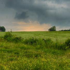 Ciel menaçant by Claude Desrosiers - Landscapes Weather ( sky, orage, champs, black, fields )