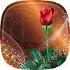 Roses Live Wallpaper ???? Rose Backgrounds