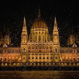Budapest  by Hüseyin Denizoğlu - Buildings & Architecture Architectural Detail ( city )