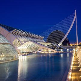 Museum Valencia by Martin Vanek - Buildings & Architecture Other Exteriors ( reflection, blue, night, bridge, valencia )