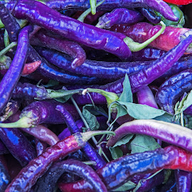 Purple Peppers by Will McNamee - Food & Drink Fruits & Vegetables ( patty_j_ball@hotmail.com; donaldbarber11@msn.com; donaldbarber11@msn.com; d3a1@aol.com;  postholes2002@yahoo.com; )