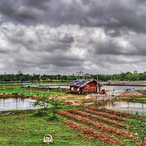 Rural Bengal by Sautrik Dutta Mantrani - Instagram & Mobile Android ( hdr, landscape, bengal, rural, mobile shot )