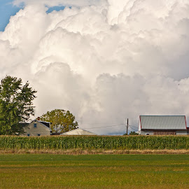 Whiteout by Reva Fuhrman - Landscapes Cloud Formations ( billowing clouds house farm rural summer cornfield rural )
