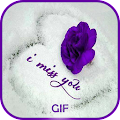 Miss You Gif APK for Bluestacks