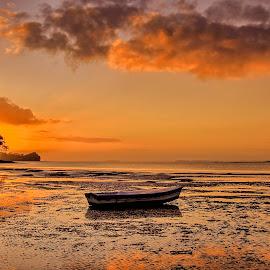 Stranded by Johan Koch - Transportation Boats ( stranded, sunrise, boat )