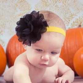 Baby Pumpkin by Jenny Hammer - Babies & Children Babies ( girl, fall, pumpkins, baby, cute )