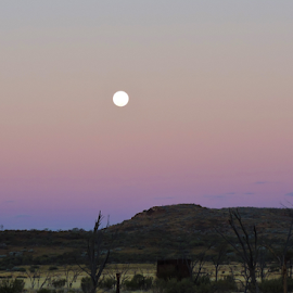 Full Moon over Great Victoria Desert WA by Kathryn Vegera - Landscapes Deserts ( moon, nightscape, desert, landscape, mining hopper )