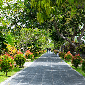 by Eko Probo D Warpani - City,  Street & Park  Historic Districts ( bali, pulau dewata, nikkor, nikon, tamron, historic )