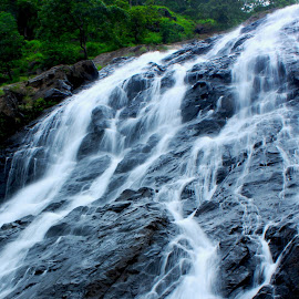 Fall into the Wild by Vaibhav Nahar - Nature Up Close Water ( #waterfall #forest #water #rock )