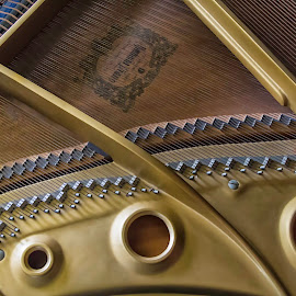 Sound Trio  9173 by Karen Celella - Artistic Objects Musical Instruments ( music, piano, details, grand, focus stacking, strings, instrument )