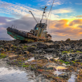 The Point Estero Shipwrecked by Eric Terhorst - Landscapes Waterscapes