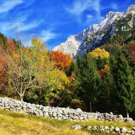 Barvita jesen 2 by Bojan Kolman - Landscapes Mountains & Hills (  )