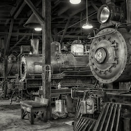 0729-TT-0624-04-16 by Fred Herring - Transportation Trains